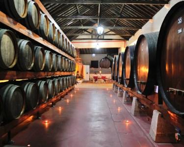 Adega Venâncio da Costa Lima | Visita e Provas de Vinho - 2 ou 4 Pessoas | Palmela