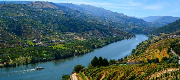 Casa dos Rui´s | Turismo Rural - Um Sonho no Douro! 1 a 3 Noites