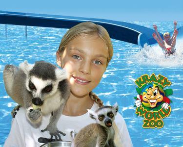 Krazy World Zoo - Algarve | Dia de Diversão Máxima na Natureza!