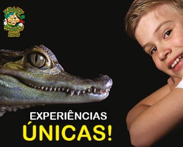 Krazy World Zoo | Algarve - Dia de Máxima Diversão na Natureza!
