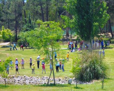 Parque Temático Tambor com + de 40 Jogos e 100 Animais   A 30 Minutos de Lisboa