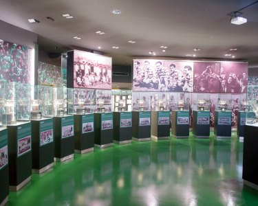 100% Sporting Clube de Portugal! Visita ao Museu, Estádio e Academia + Cachecol