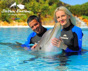 Dolphin Emotions! Interacção com Golfinhos no Zoomarine para Dois | Presente Inesquecível!
