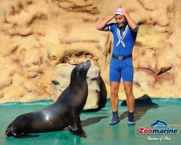Zoomarine | Algarve - O Mistério dos Oceanos! Entrada Júnior ou Adulto