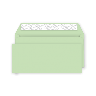 DL Peel and Seal Envelope - Spearmint Green