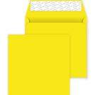 503 Sq 220 Banana Yellow 01