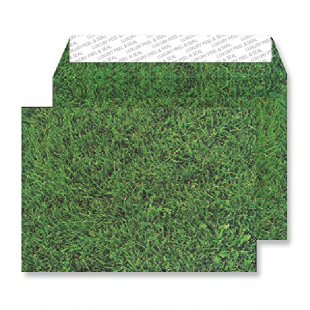 C5 Peel and Seal Envelopes - Fresh Mown Grass