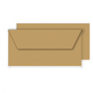 Essentials DL Fleck Kraft Envelopes