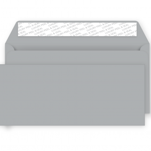 DL Metallic Silver Peel and Seal Envelopes 130gsm (114mm x229mm)