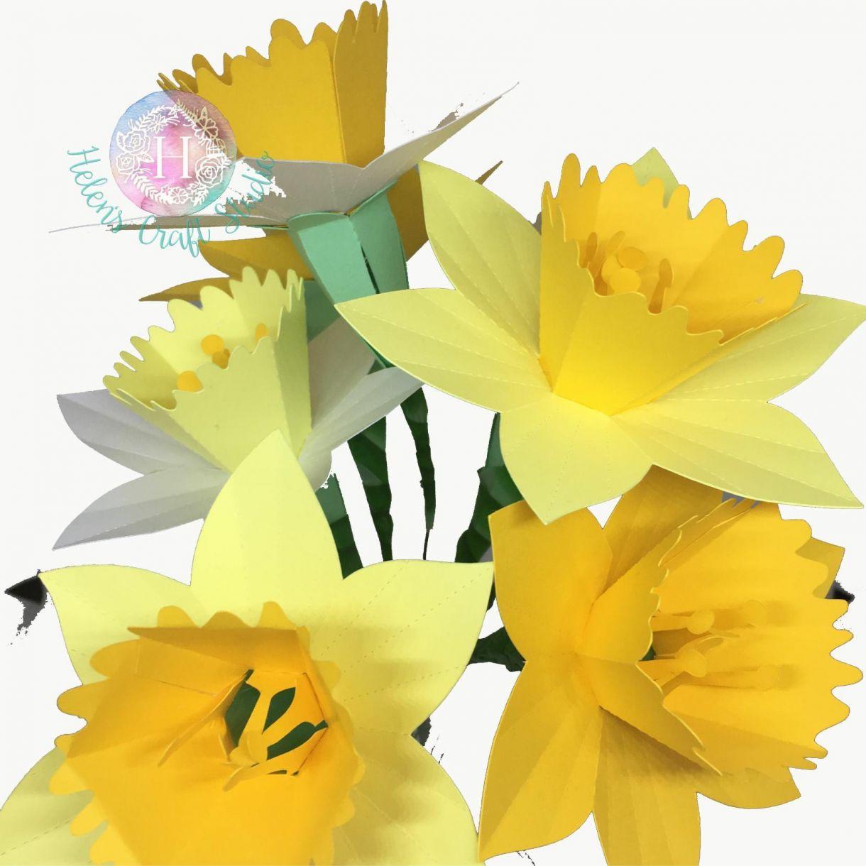 3 D Daffodil 02 Wm