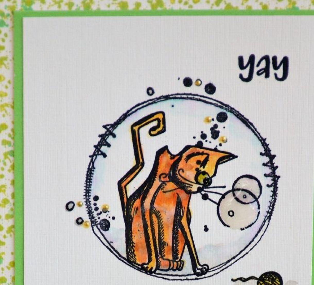 Fun Dog And Cat Birthday Cards 5