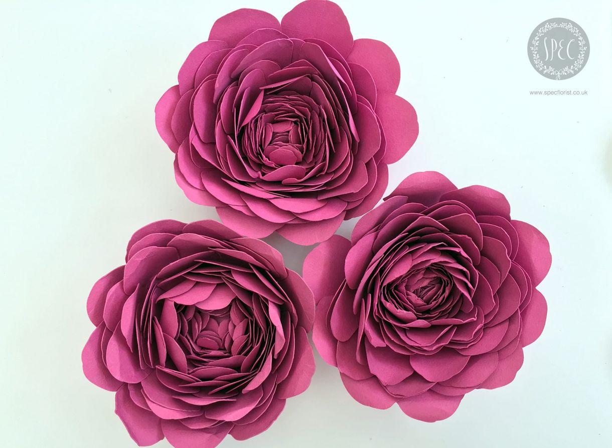 Layered paper flowers mightylinksfo