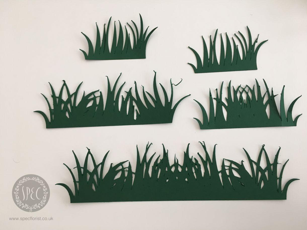 Img 2774 Paper Grass