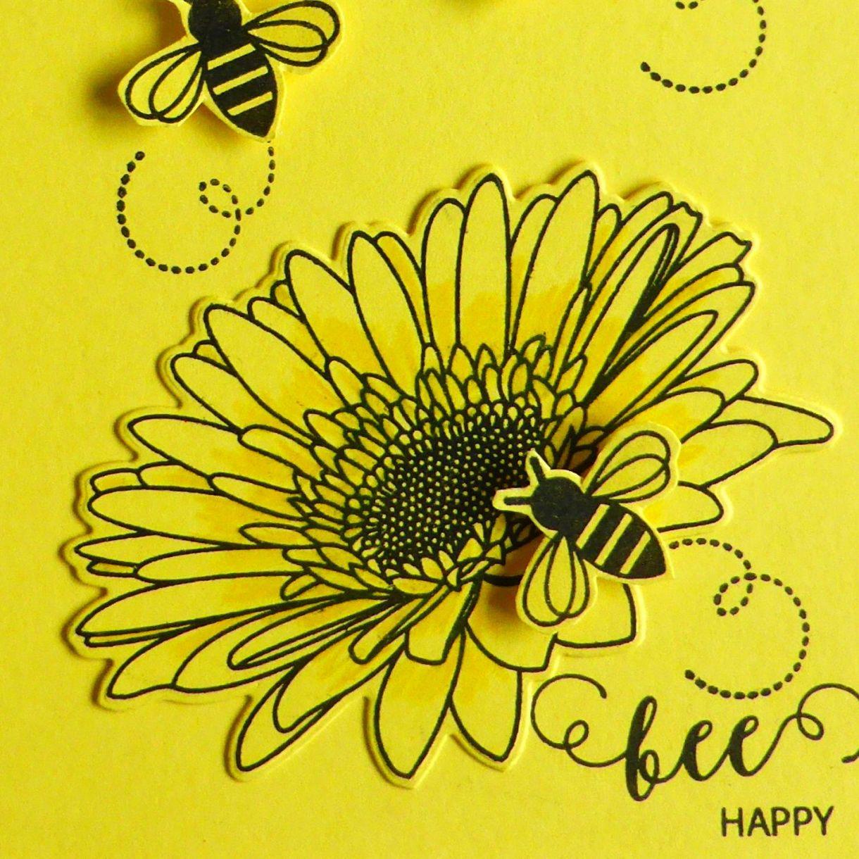 Jane Yellow 2B