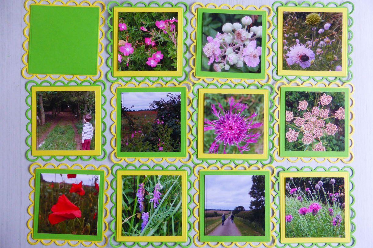 Jane Yellow Green Mini Album 6