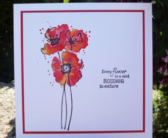 Fabulously Floral - 3 pretty cards to brighten your day