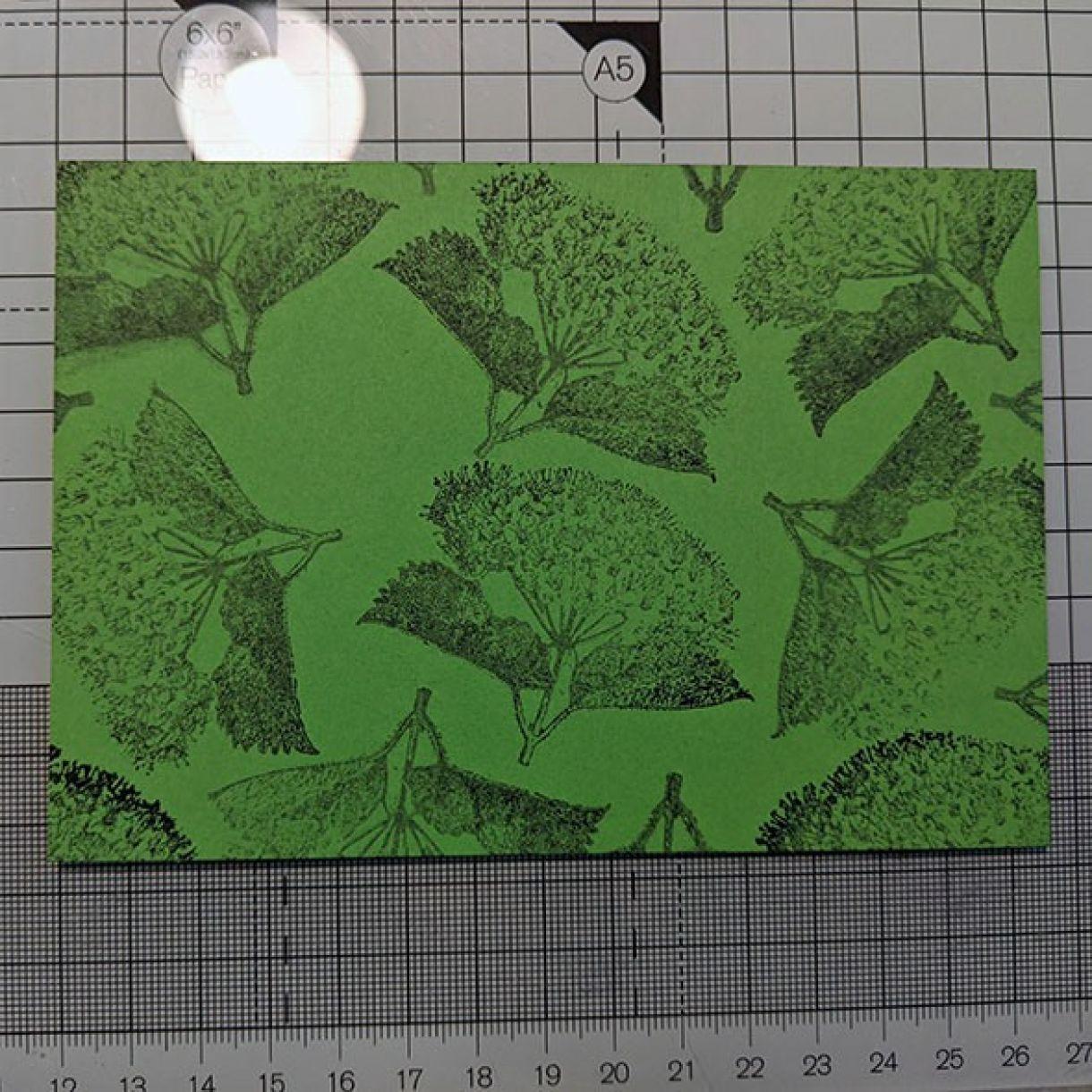 Green On Green Gift Box Nm 2