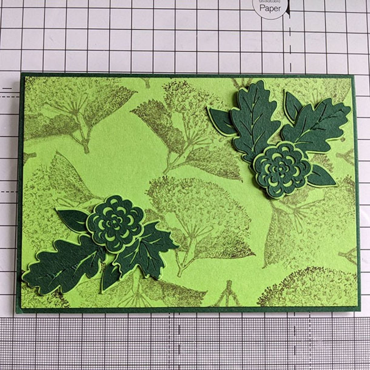 Green On Green Gift Box Nm 4