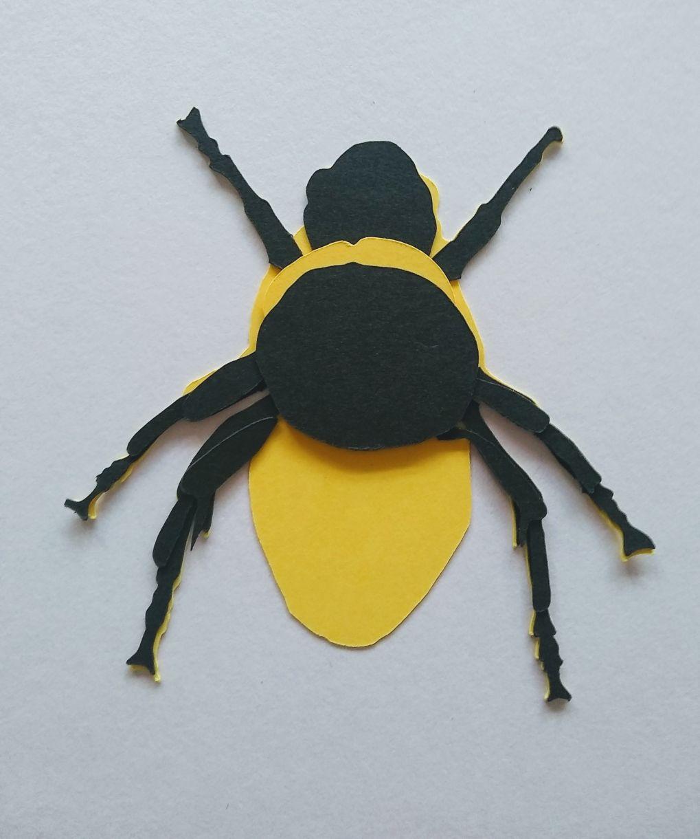 Legs Underneath Bee