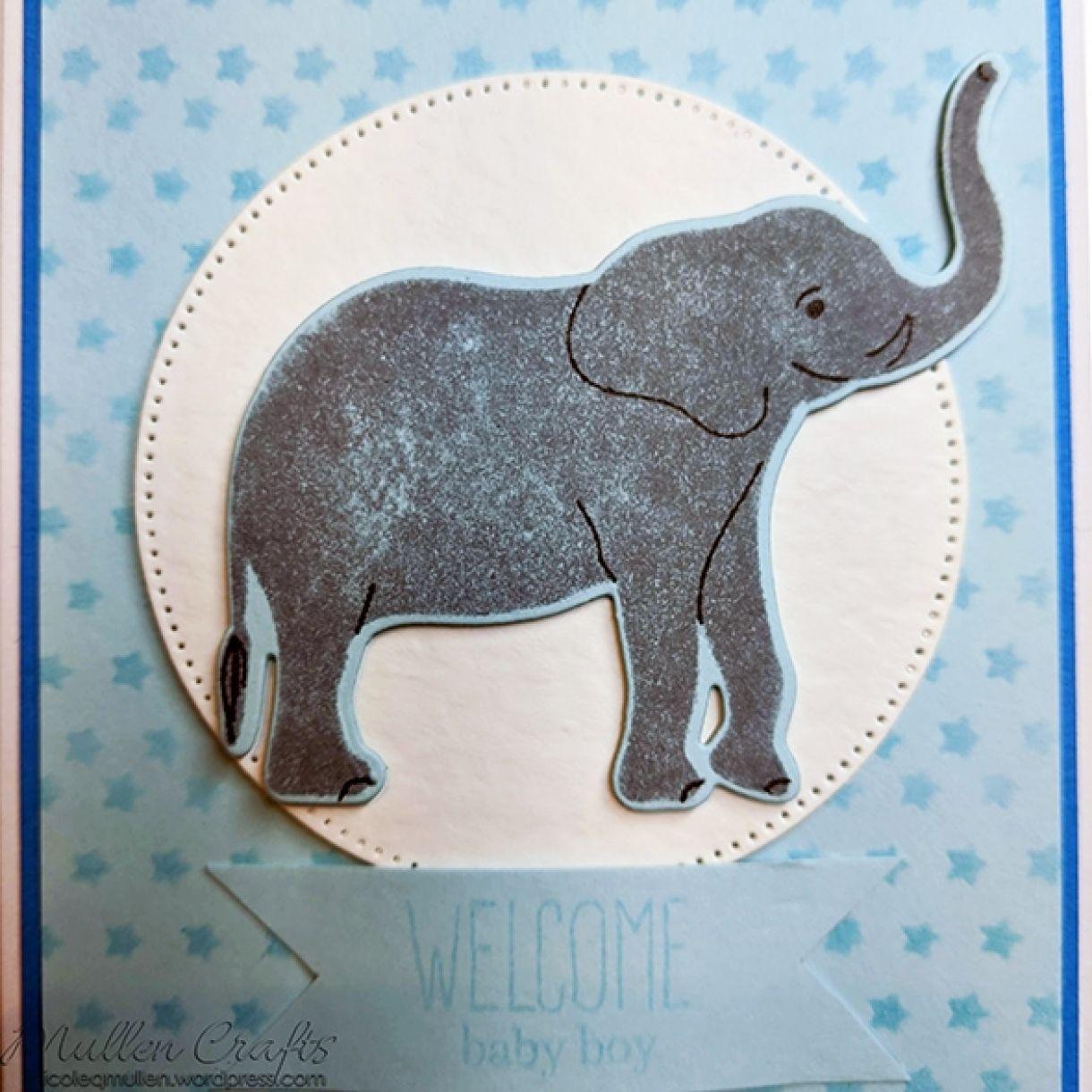 Nm Baby Boy Card Pale Blue 10