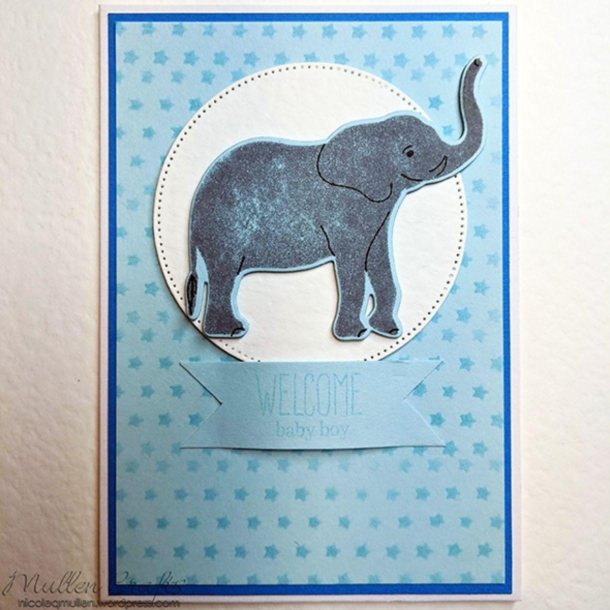 Nm Baby Boy Card Pale Blue 9