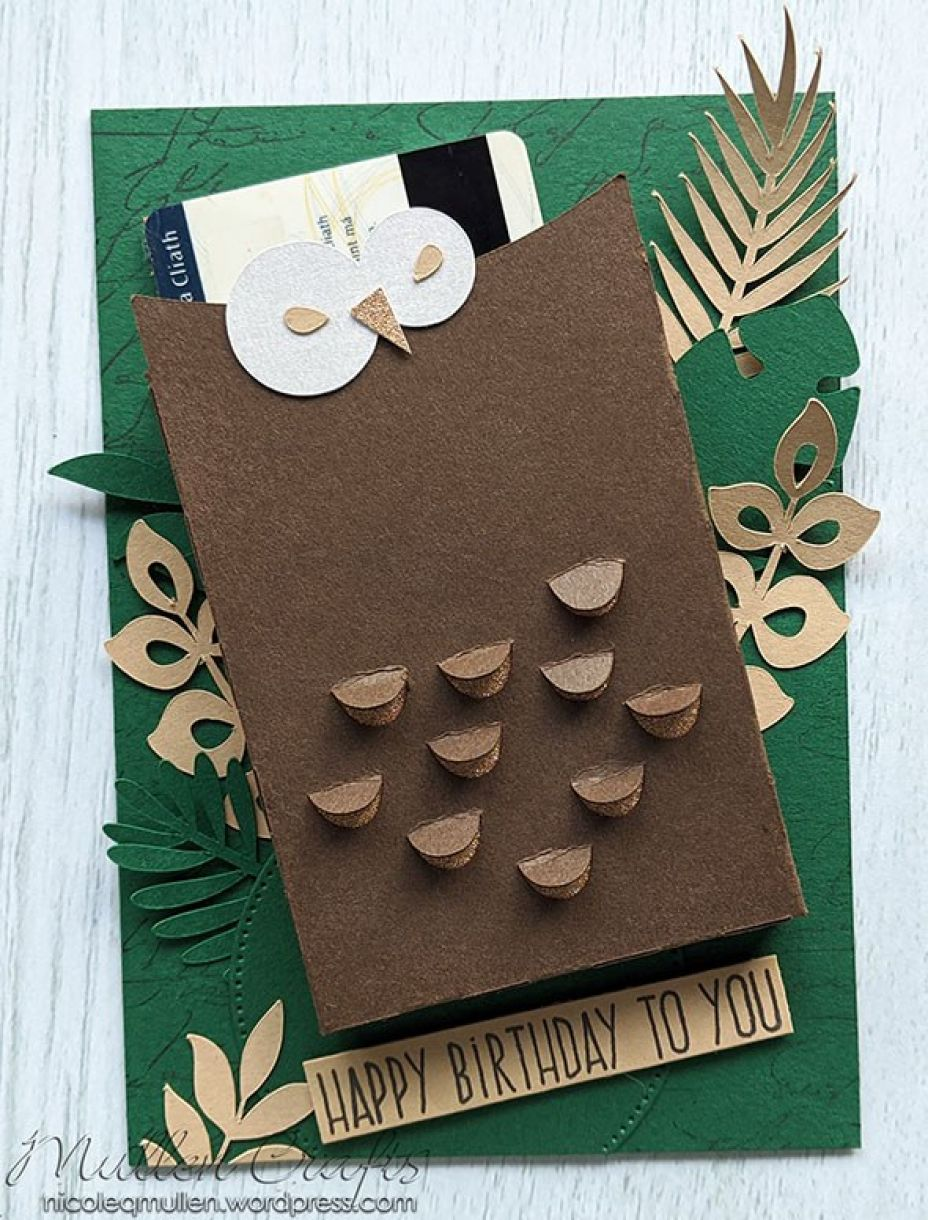 Nm Owl Gift Box Card 11