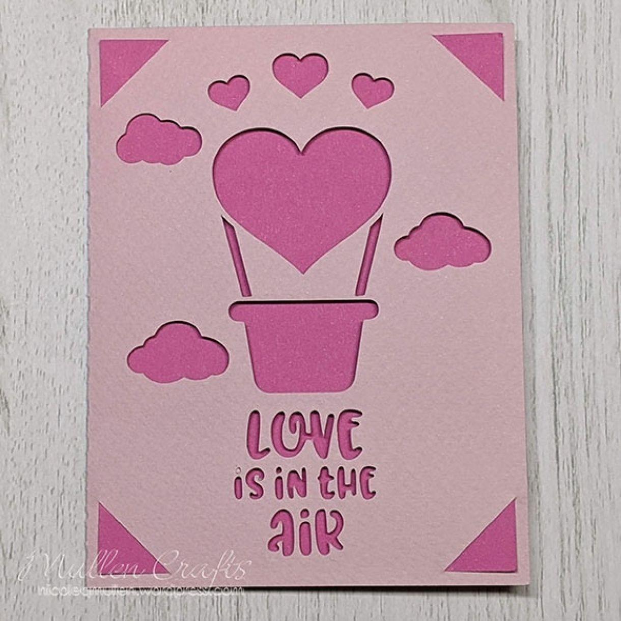 Nm Pink Hot Air Balloon 2