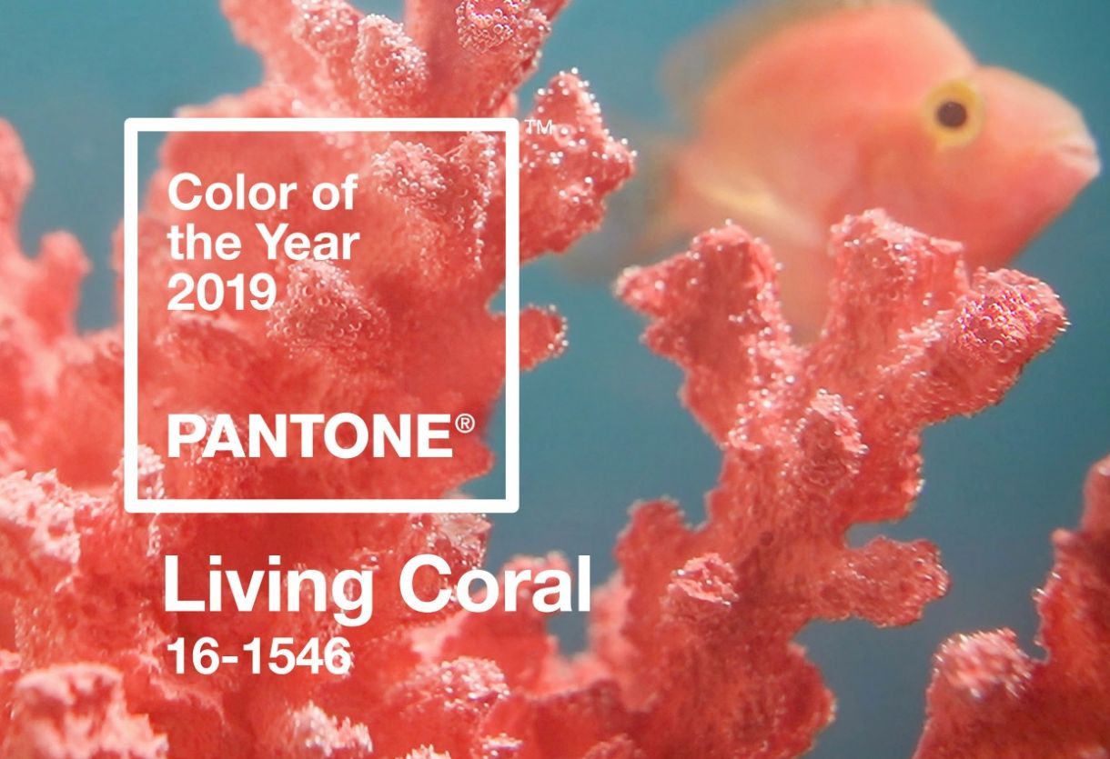 Pantone Color Of The Year 2019 Living Coral Banner Mobile