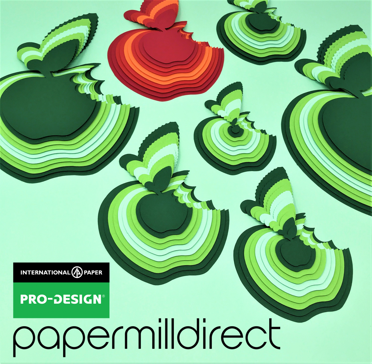 Papermilldirect Pro Design