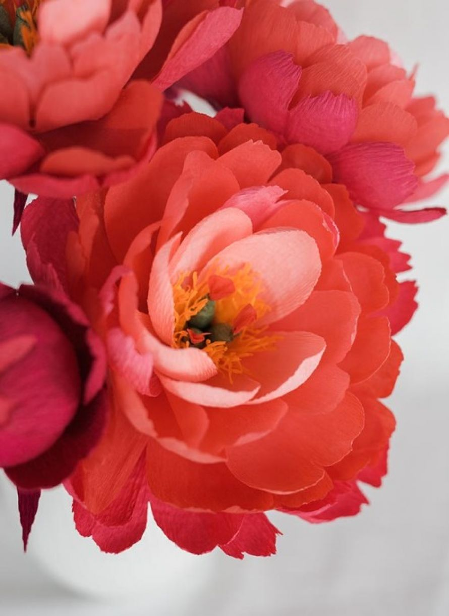 Paper Flowers Make A Peony