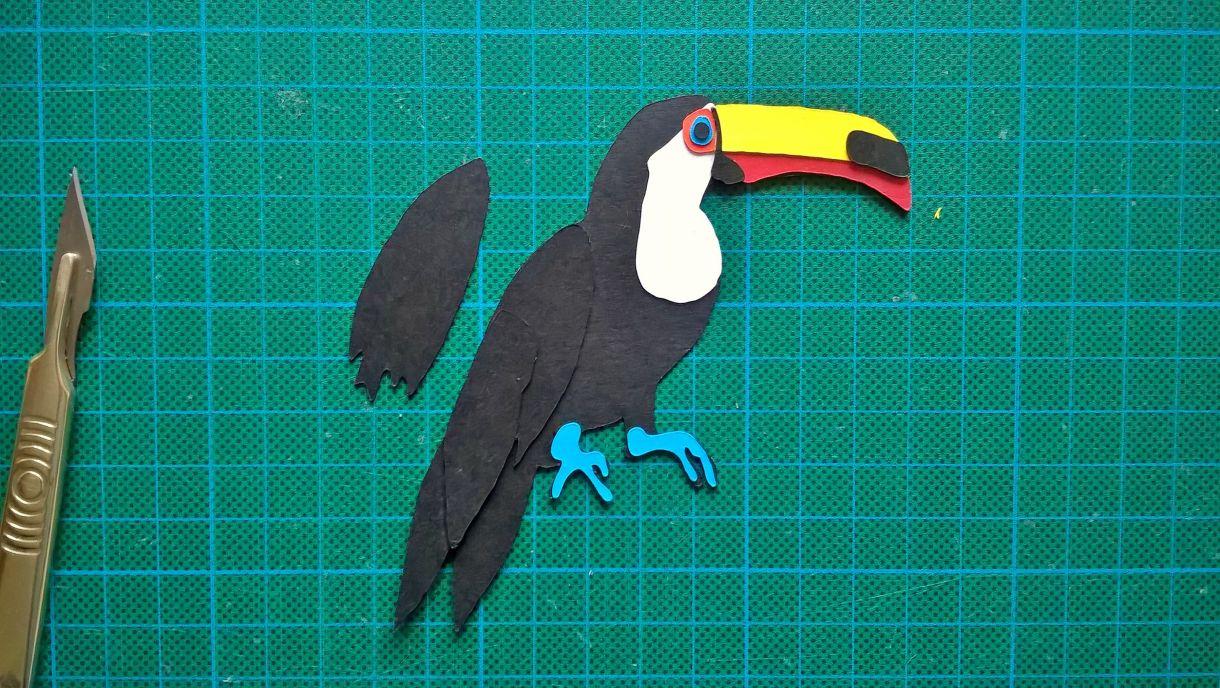 Toucan 14