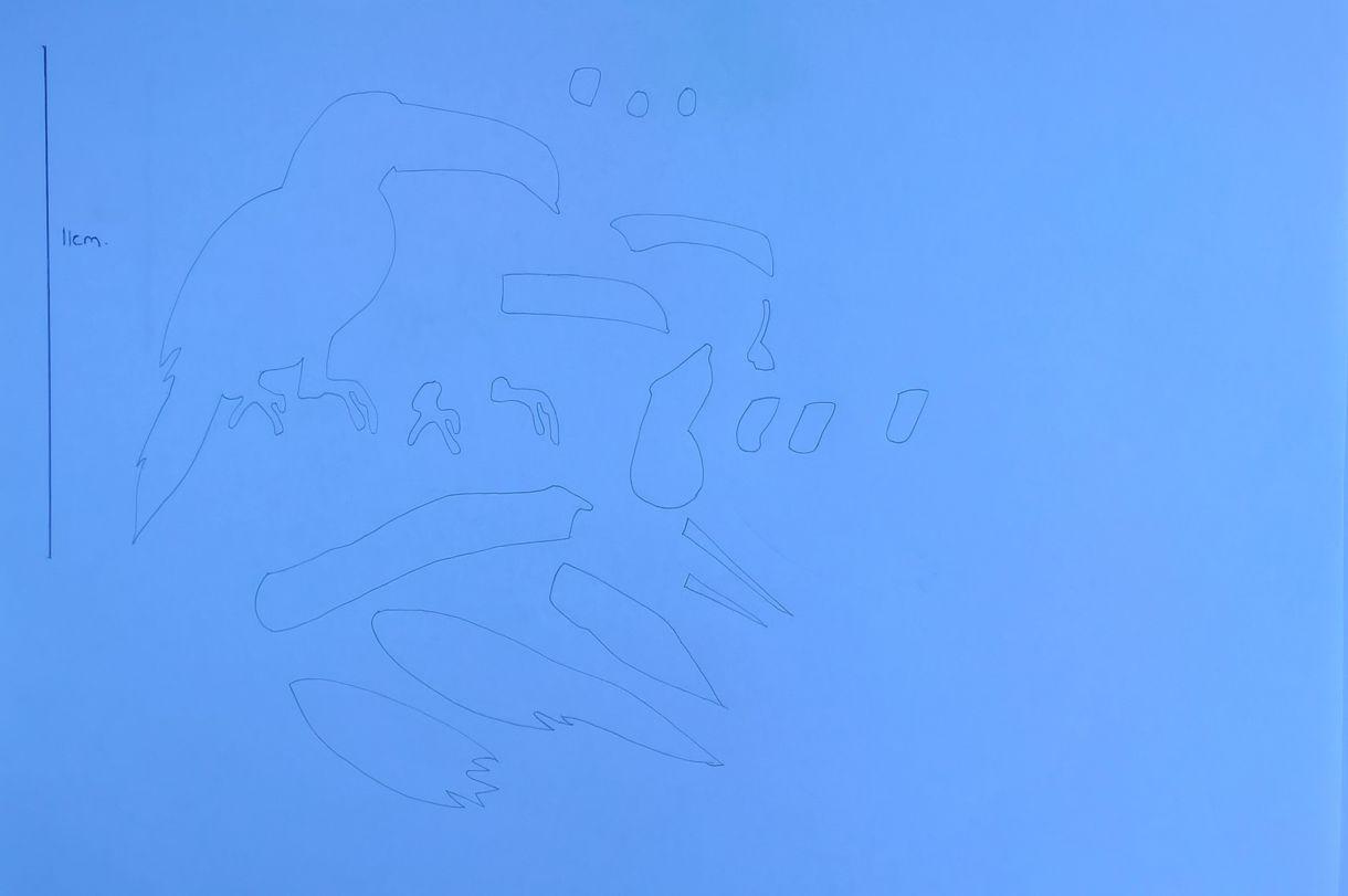 Toucan 3