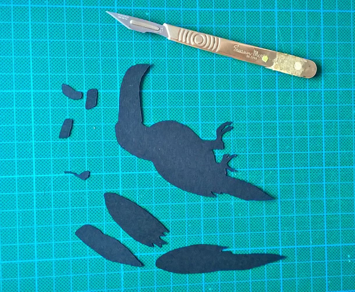 Toucan 4