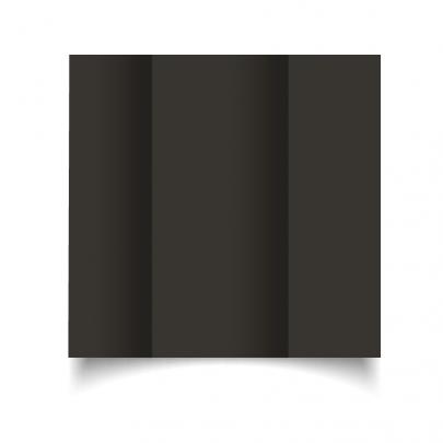 Black Dl Gate Fold Card Blank 01