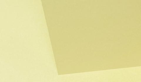 Camoscio Woodstock Card Blanks Double sided 285gsm