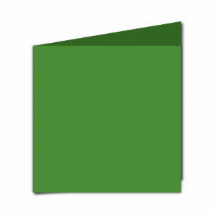Apple Green Card Blanks Double Sided 240gsm-Large Square-Portrait