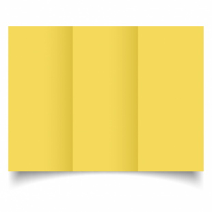 Daffodil Yellow Card Blanks Double Sided 240gsm-DL-Trifold