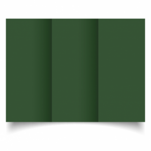 Dark Green Card Blanks Double Sided 240gsm-DL-Trifold