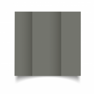 Antracite Sirio Colour Card Blanks Double sided 290gsm-DL-Gatefold