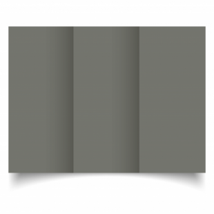 Antracite Sirio Colour Card Blanks Double sided 290gsm-DL-Trifold