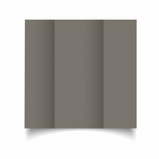 Pietra Sirio Colour Card Blanks Double sided 290gsm-DL-Gatefold