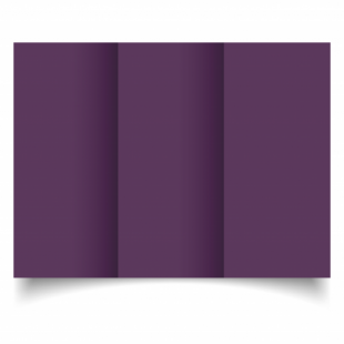Vino Sirio Colour Card Blanks Double sided 290gsm-DL-Trifold