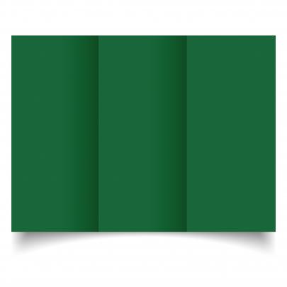 Dl Tri Fold Foglia 01