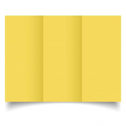 Daffodil Yellow Dl Tri Fold Card Blank 01