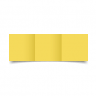 Small Square Trifold Daffodil Card Blanks