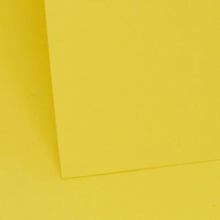 Daffodil Yellow1212