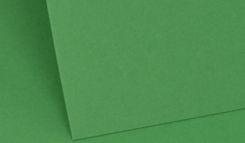 Emerald Green Card Blanks Double sided 290gsm
