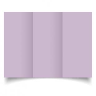 Lilac Dl Tri Fold Card Blank 01
