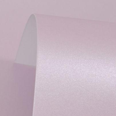 Powder Purple