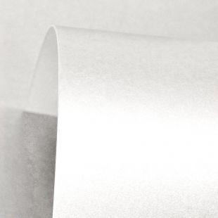 Lustre Print Silver Ice White 300Gsm